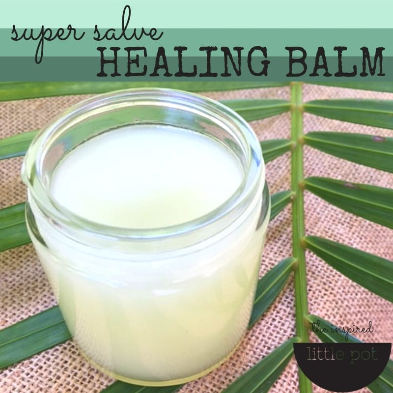 Super Salve Healing Balm - The Inspired Little Pot