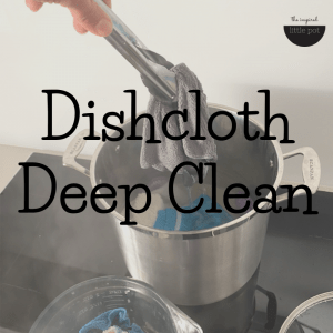 Dishcloth Deep Clean